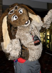 Skuff at MFF 2014