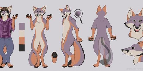 Grey fox reference for LittleDionysus