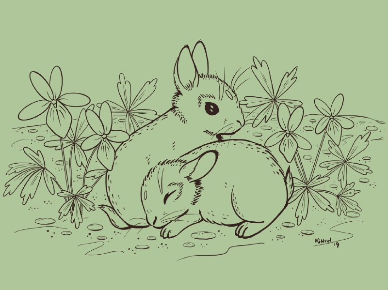 Bunnies and Violets