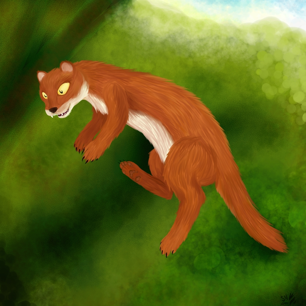 Most recent image: Weasellus Hungrius