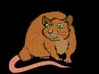 Jacky the Rat