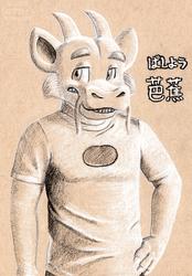 Basho on tone paper
