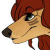 avatar of Donnecha