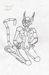 Catbot Prototype