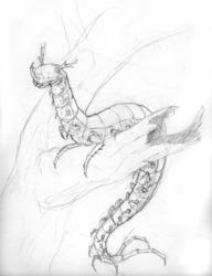 Rosette the centi-creature