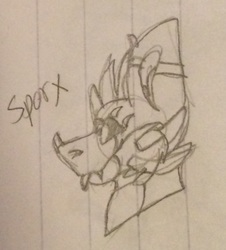 Sporx Headshot [NO COLOR]