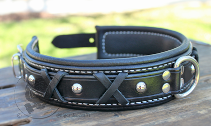 D6016's Collar