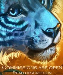 Commissions are OPEN ^^
