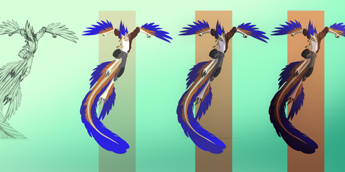 Karo Leaping- Stages