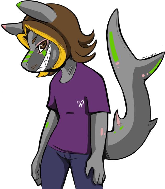 grumpy sharkdog