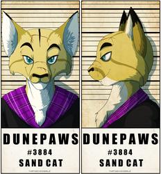 Police Line Up - DunePaws