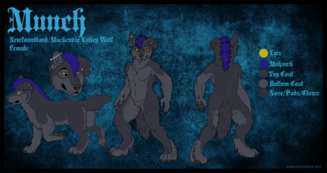 Munch - Reference Sheet