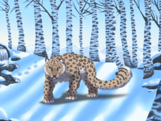 Felis Pardus - Winter Forest Background