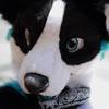 avatar of Kori Karma