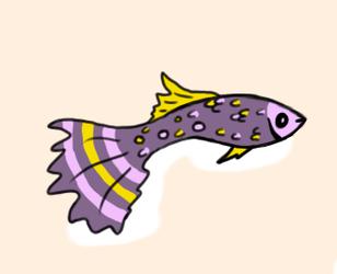 Adopted - No.42 - Guppy Fish