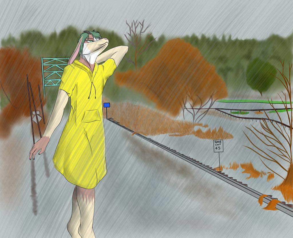 Commission: Rosco in the Rain