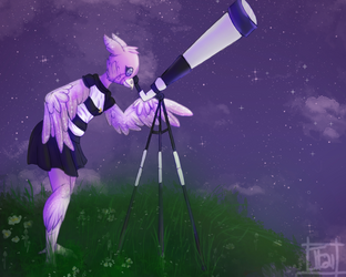 [P]  Starry Night Gazing