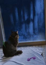 Catting Alone