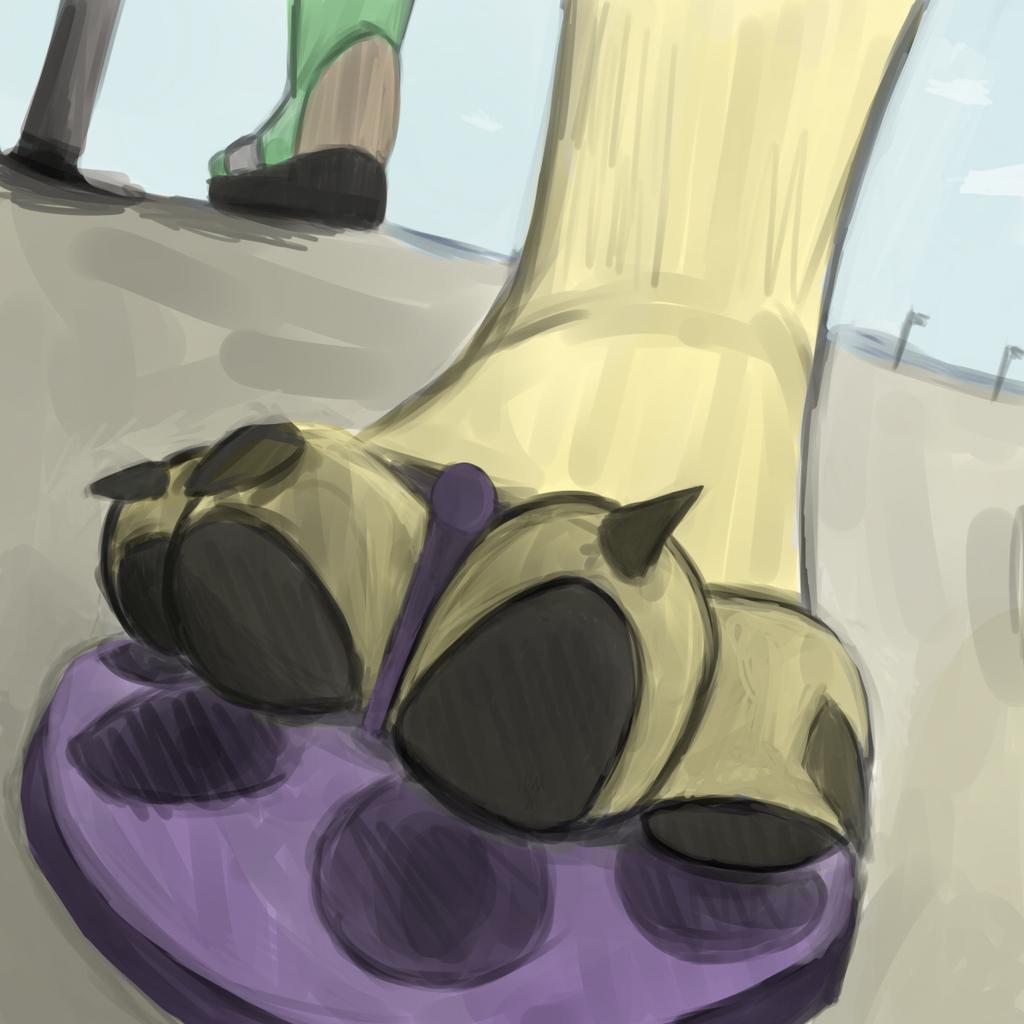 Sandled Paw