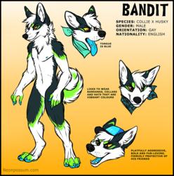 Reference: Bandit