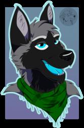 34. Silver Foxx Badge