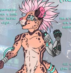 Auction - Cyberpunk King Cheetah