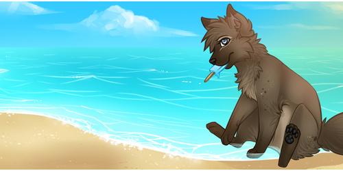 Day on the Beach