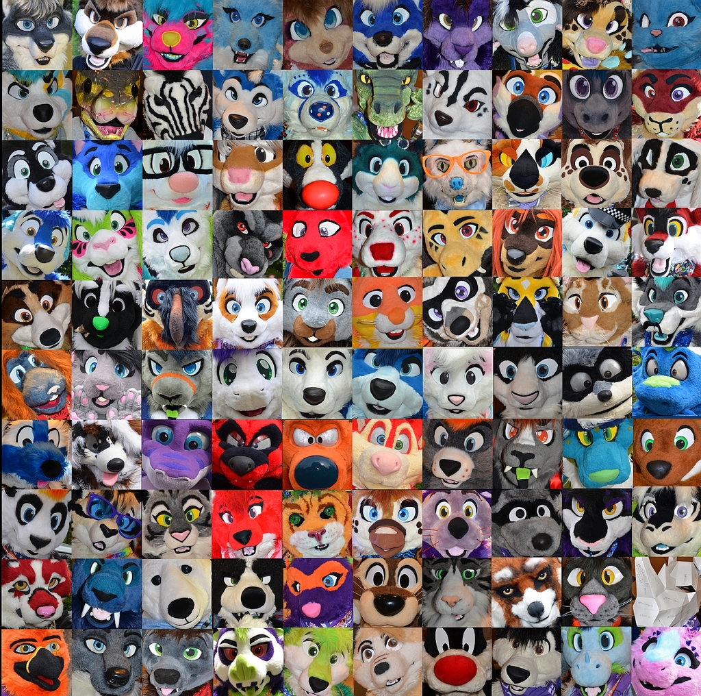 The Faces of ConFuzzled 2017
