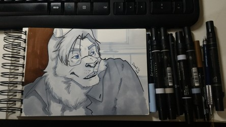 Derek, the Lion