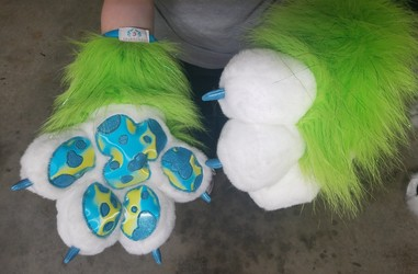 Lenticular Puffy Paws Video