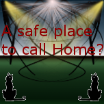 A safe place to call home -Chapter 1