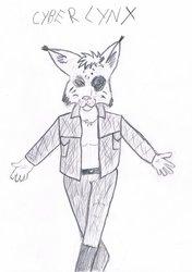 Introducing Heroine: Cyber Lynx