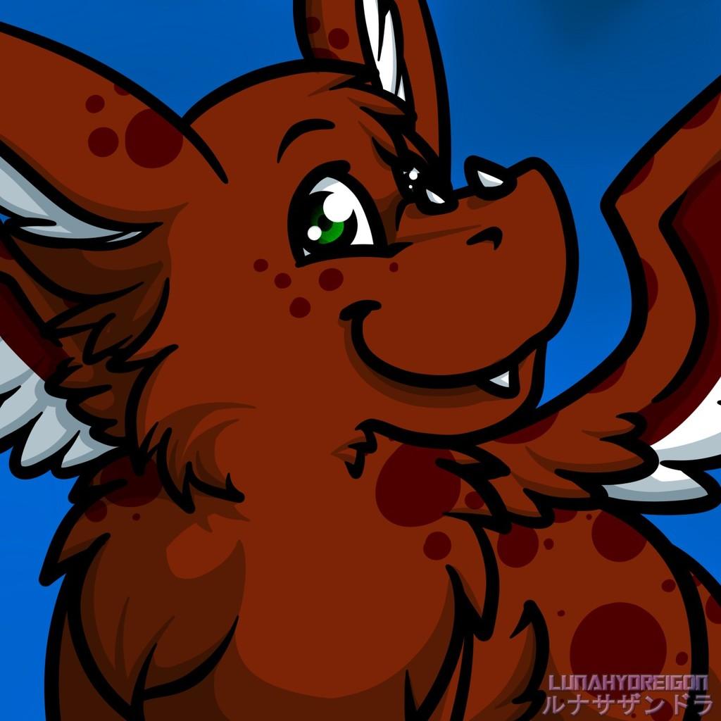 Kilik dutch angel dragon for sale!