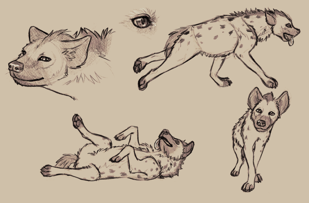 Luco Doodles