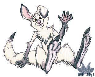 Snowshoe Kangaroo