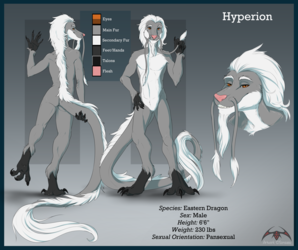 Reference Sheet Commission #004: Hyperion-Enigma