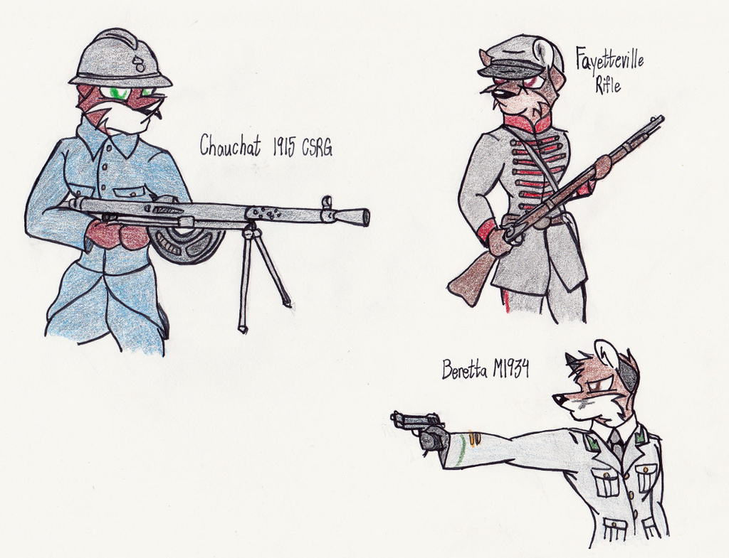 Gun Study