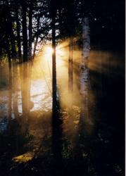 Churchill Stream, Maine Wilderness