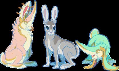 [P/G] Not Rabbits