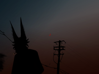 Silhouette in Scars