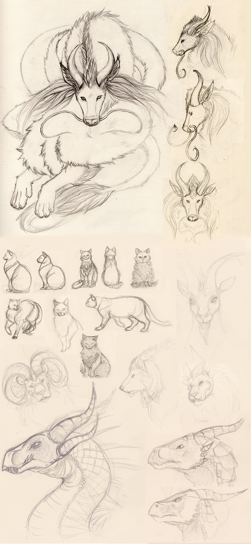 dragons and cats sketch page