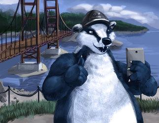 Badger on the big bridge