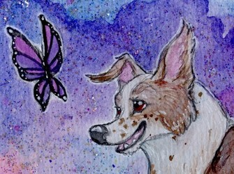 Galaxy Glitter: Leaping for Lupus