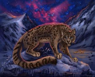 Witer's Nebula