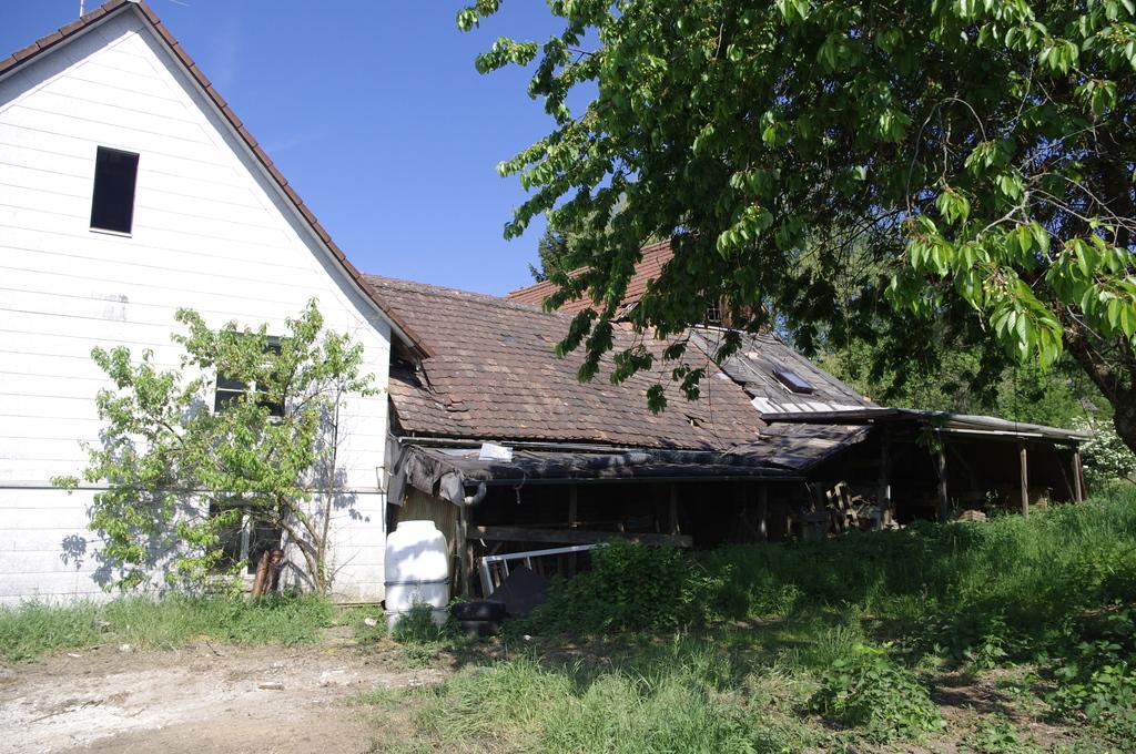 A farmers estate near Meersburg 2