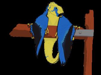 Aquilops X Birdwing Butterfly X Wyvern