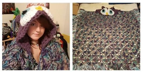 Crochet hooded owl blanket