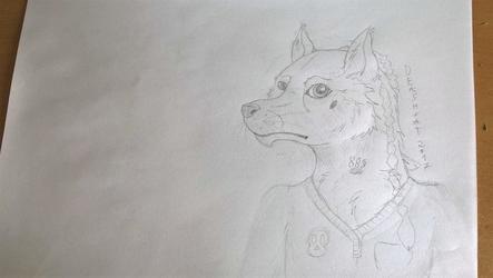 Wolf Anthro