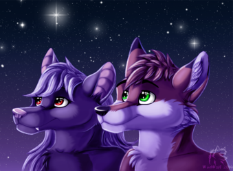 Look at the stars - drawn by WindWo1f