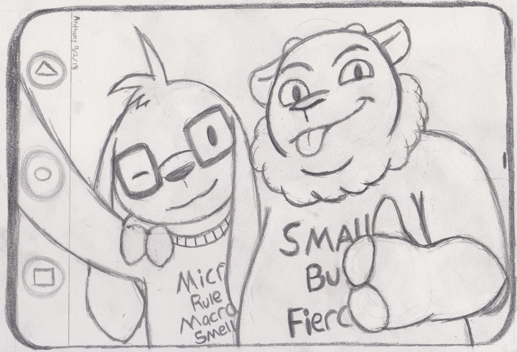 Most recent image: MICRO'S RULE!!